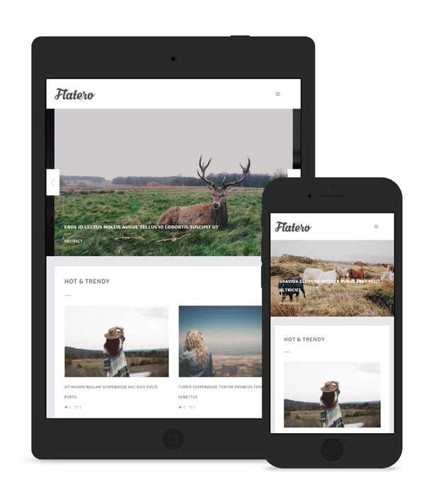 Flatero - Responsive WordPress Blog Theme